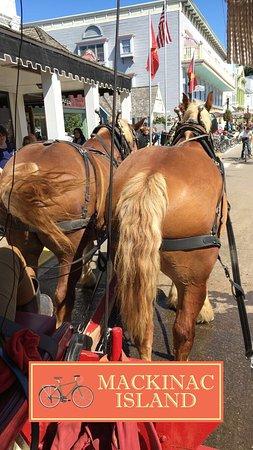 Mackinac Island Carriage Tours: photo0.jpg