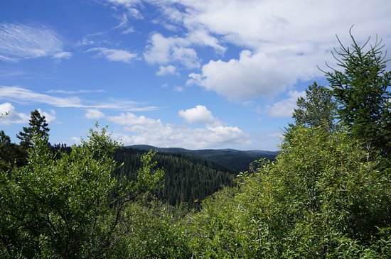 Cloudcroft, Nuevo Mexico: Breathtaking view from the highest point of the Osha Trail, definitely worth it!