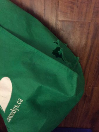 Bancroft, Canada: Mouse ate through our bag