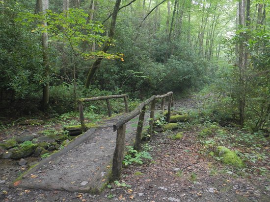 Townsend, TN: A little bridge on the trail about a mile above Lynn Camp Cascades.