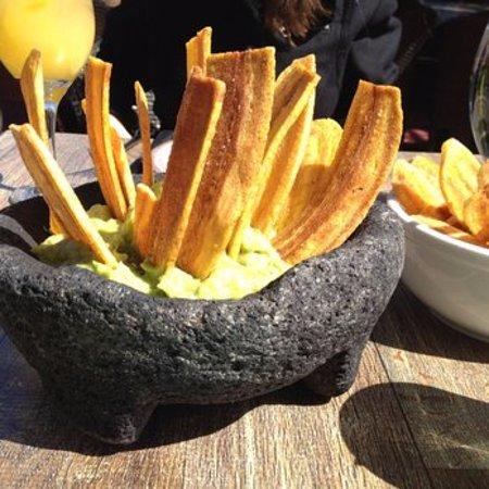North Bergen, NJ: Best Guacamole