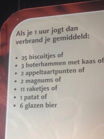 Oegstgeest, Países Bajos: photo0.jpg