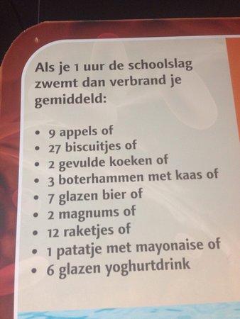 Oegstgeest, Ολλανδία: photo1.jpg