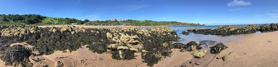Coldingham, UK: photo2.jpg