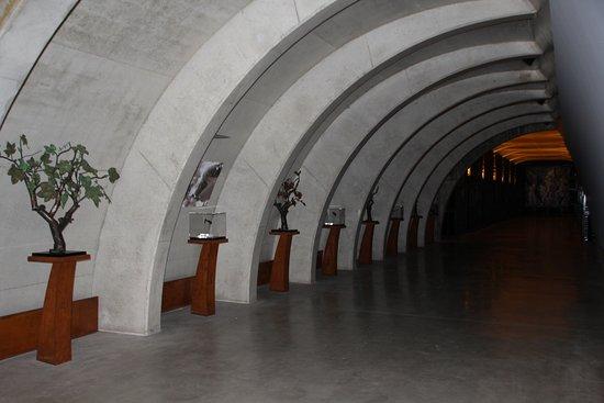Sant Sadurní d'Anoia, España: INTERIOR DE LA CAVA