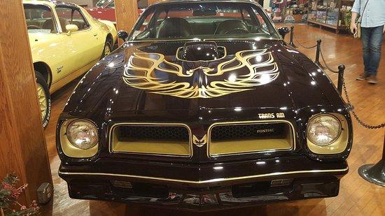 Pontiac-Oakland Automobile Museum: Trans Am