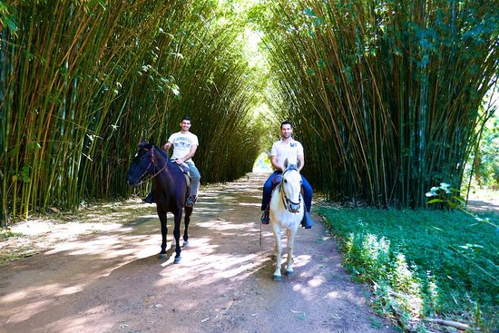 Puerto Valle - Hotel de Esteros: Horse riding in the Puerto Valle grounds