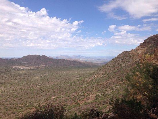Mesa, AZ: photo3.jpg