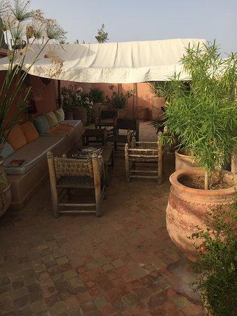 Riad Limouna: Roof Terrace
