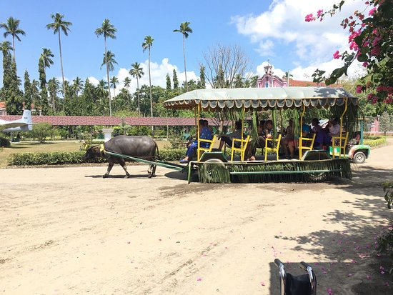Villa Escudero Resort: photo2.jpg