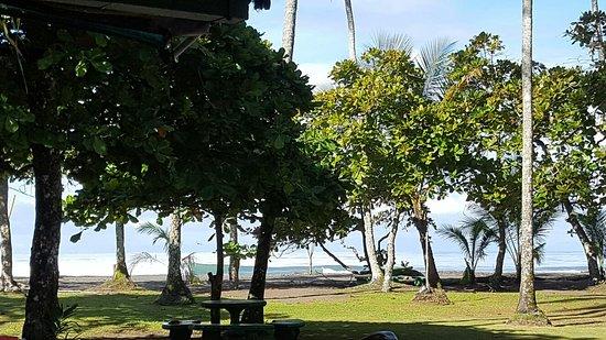 Playa Matapalo, Costa Rica: 20160827_080319_large.jpg
