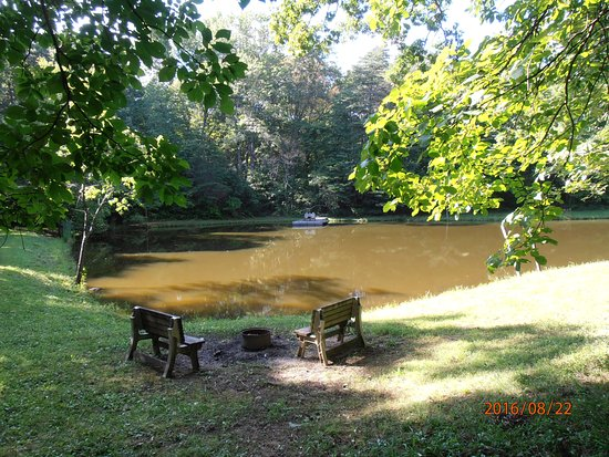 Springwood Cabins: Pond from the cabin