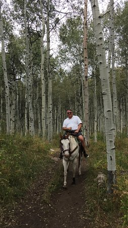 Rocky Mountain Recreation of Utah: Tiny my horse) and I in one of the many Aspen Groves