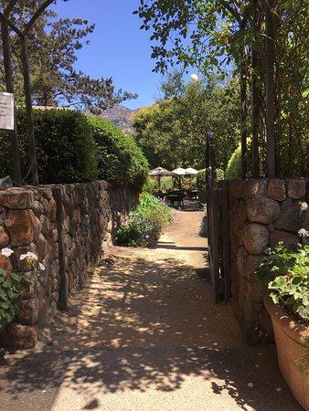 Pine Ridge Winery: photo2.jpg