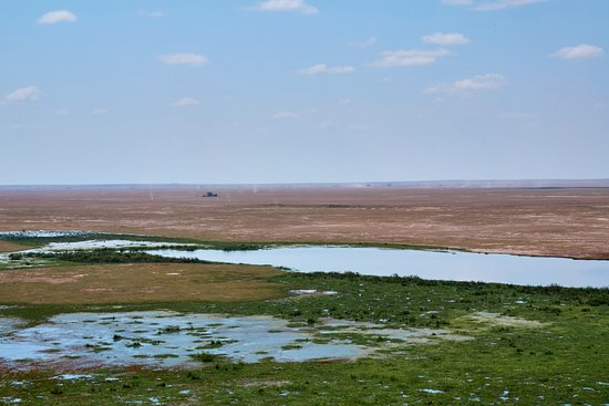 Amboseli National Park, Kenya : From the View Hut of Amboseli