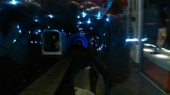 Bund Sightseeing Tunnel: IMAG0443_large.jpg