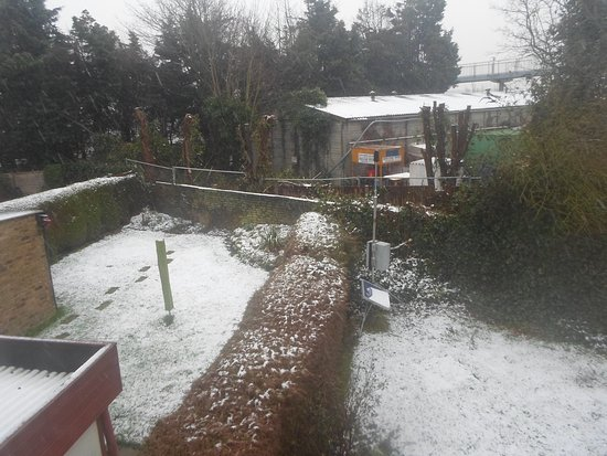 West Drayton, UK: Nice backyard!