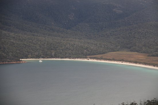 Coles Bay, Australia: close-up shot of Winglass bay