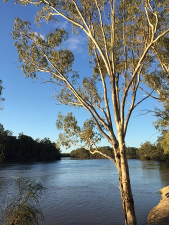 Trust for Nature property with some great rehabilitation work being done on this historic Murray