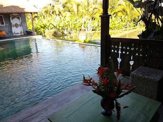 Hati Padi Cottages: 20160825_075909_large.jpg