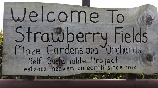 Strawberry Fields Yoga & Garden