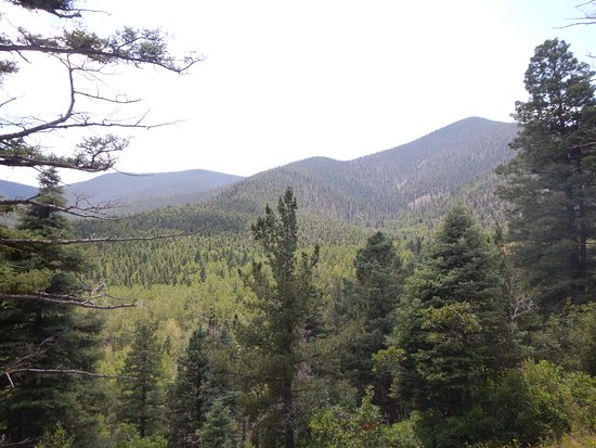 Eagle Nest, NM: View from the Clear Creek Trail in Cimarron Canyon