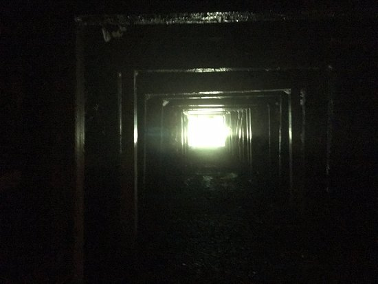 Stearns, KY: The view of the entrance to the mine shaft from inside