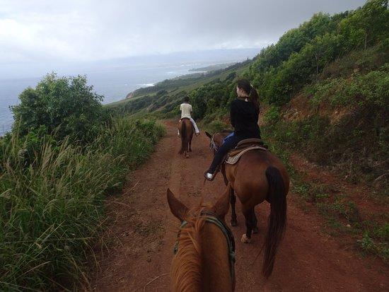 Wailuku, HI: Afternoon Trail Ride