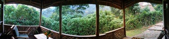 Bwindi Impenetrable National Park, Uganda: PANO_20160808_184745_large.jpg