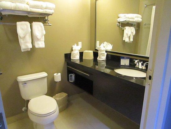 Miami Springs, FL: Clean Bathroom