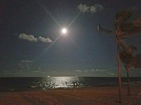 Fort Lauderdale Beach: Life's A Beach!