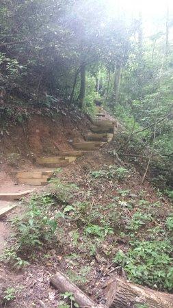 Mountain Rest, SC: 20160806_092931_large.jpg