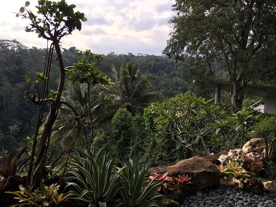 Black Penny Villas Ubud : photo1.jpg