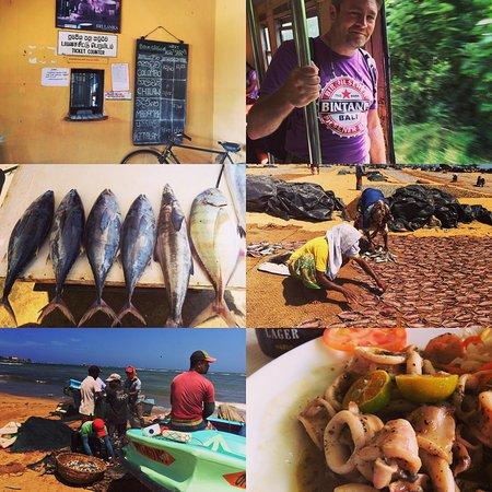 Ging Oya Lodge: photo2.jpg