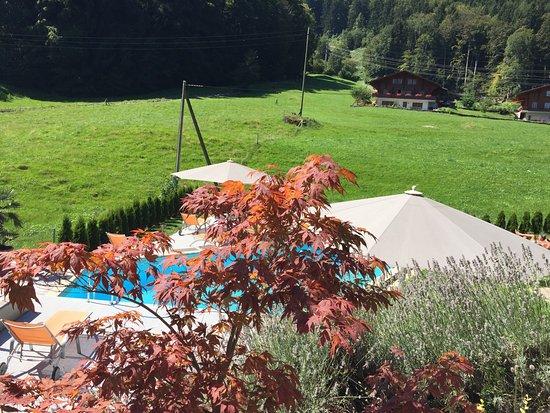 Wilderswil, Svizzera: photo1.jpg
