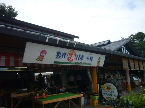 Matsukawa-mura Resmi