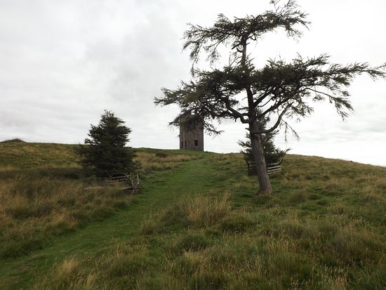 Kinpurnie Estate: Nearly at the top