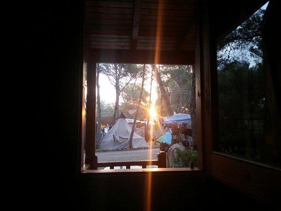 Camping Cala Nova : 20160712_065724_large.jpg