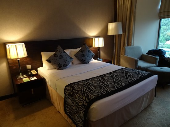 Peninsula Excelsior Hotel: Singapore Airlines Stopover Room