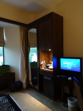 Peninsula Excelsior Hotel: Reasonable hanging space and a decent television