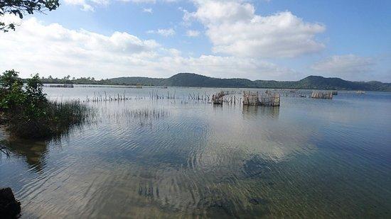 S:T Lucia, Sydafrika: Kosi Bay