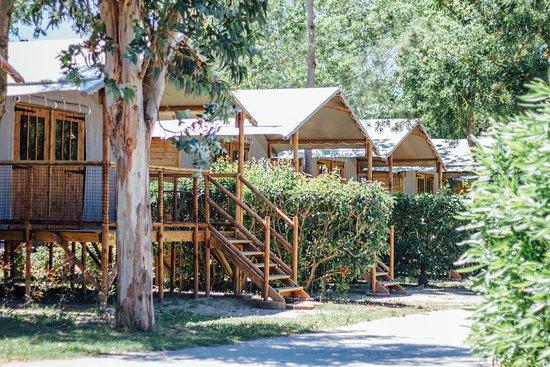 Camping Les Pins: Les cabanes Lodges