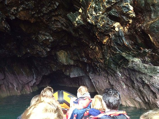 St. Davids, UK: Dave was full of fun and interesting tid bits regarding the geology, wildlife and history.
