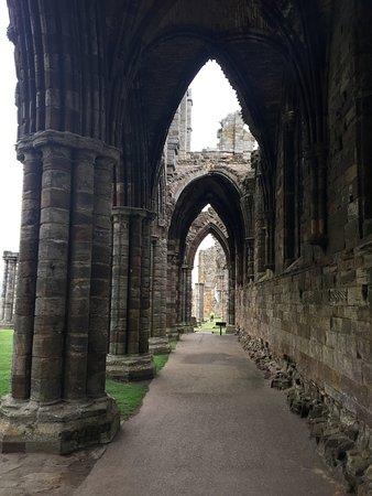 Whitby Abbey: photo3.jpg