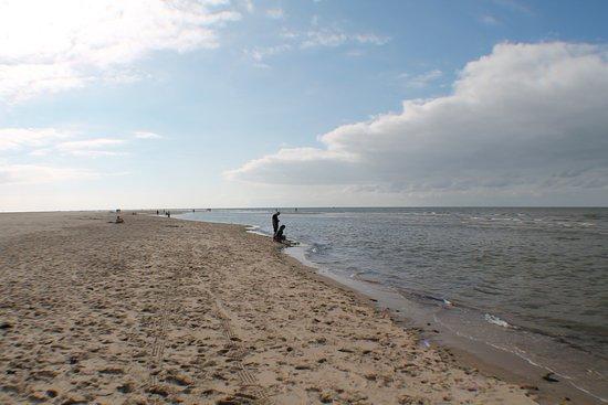 De Cocksdorp, Nederländerna: la spiaggia