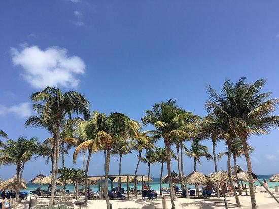 Divi Aruba Phoenix Beach Resort: photo3.jpg