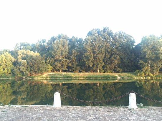 Chouze-sur-Loire, Francia: Après midi vue de la terrasse