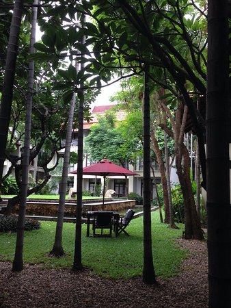 Bodhi Serene Hotel : Giardino interno dell'hotel