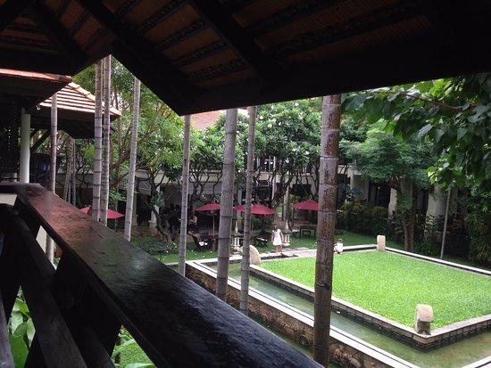 Bodhi Serene Hotel : Vista sul giardino dalla camera