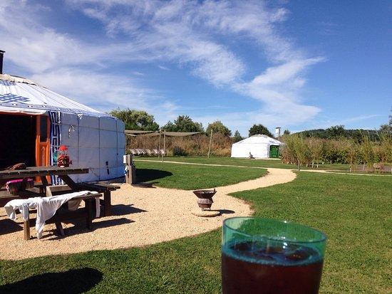 Shaftesbury, UK: Caalm Camp